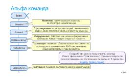 IT-roles-Tsepkov-LeadManageIT.pdf